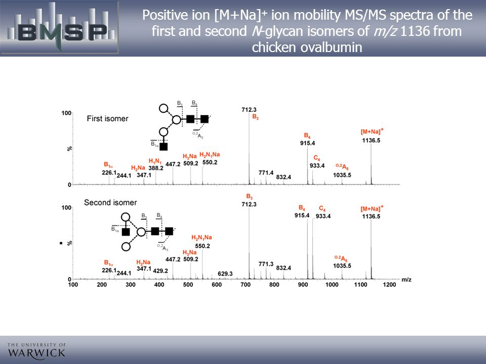 Positive ion [M+Na]+ ion mobility MS/MS spectra of the first and second N-glycan isomers of m/z 1136 from chicken ovalbumin